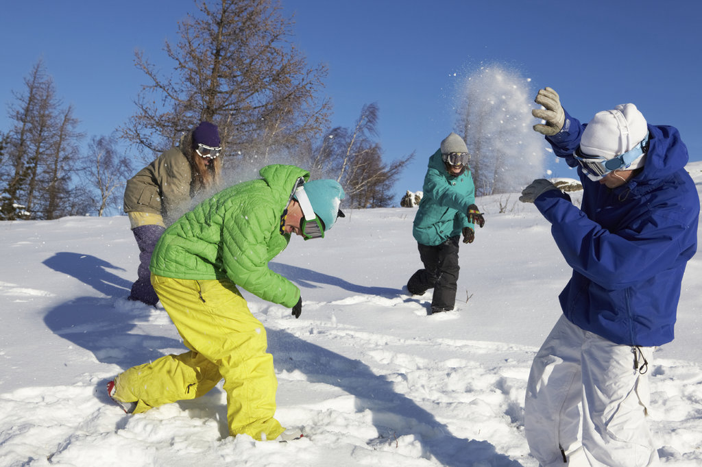 Group having a snow ball fight