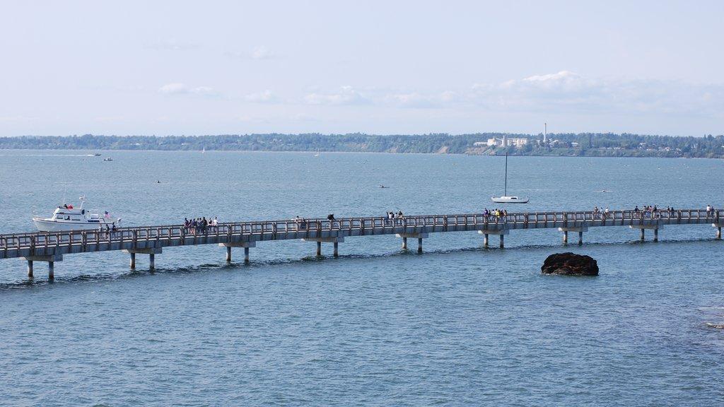 Bellingham showing general coastal views, a bay or harbor and a bridge
