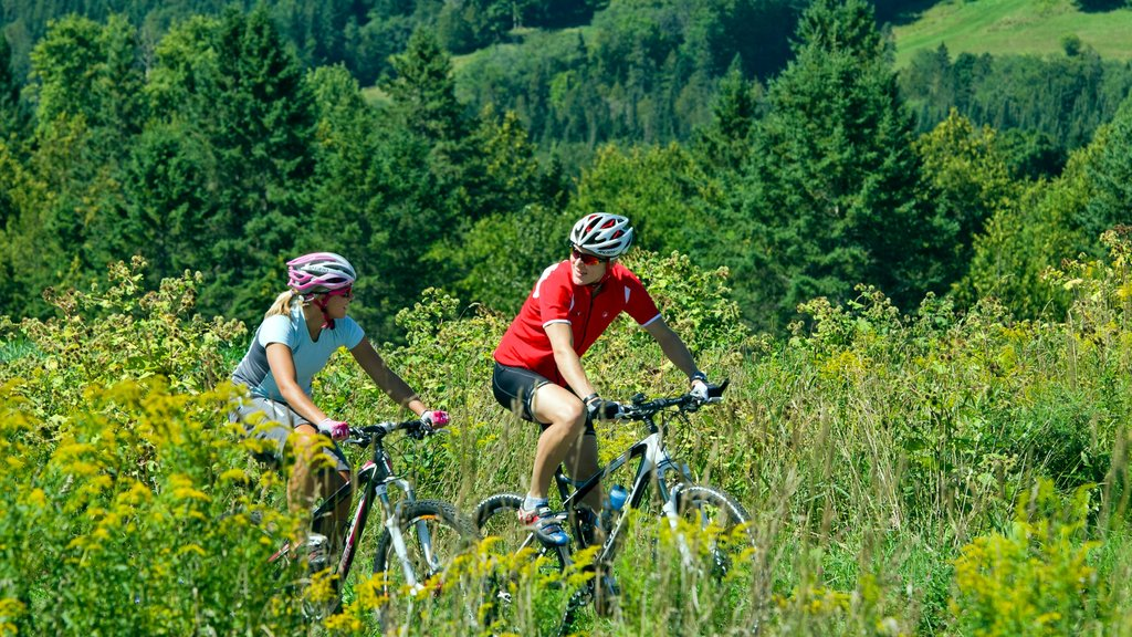 St. Johnsbury which includes mountain biking and forests as well as a couple