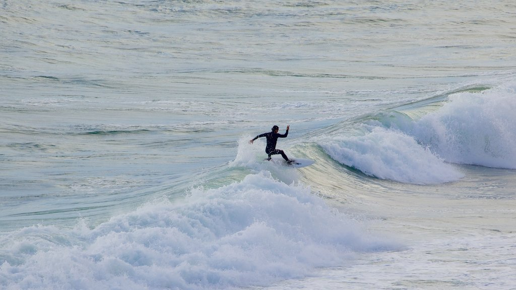 Biarritz showing waves and surfing