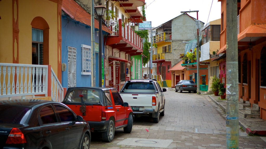 Flores featuring street scenes and a house