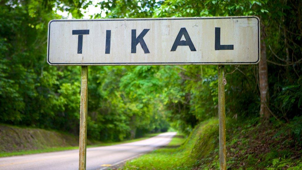 Tikal featuring signage