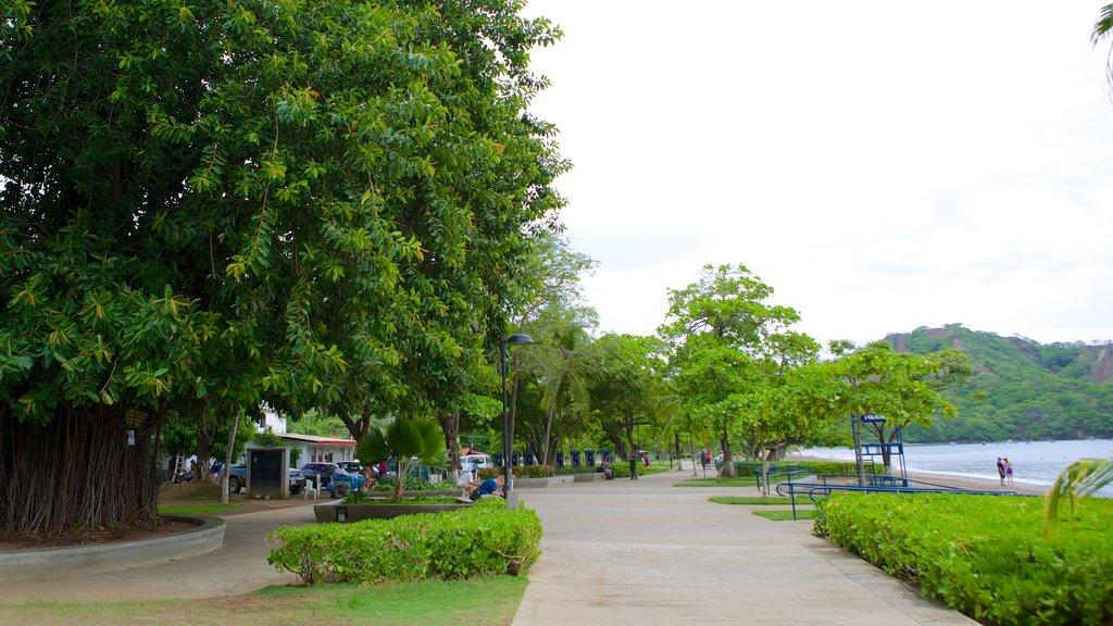 Playa del Coco mostrando un parque