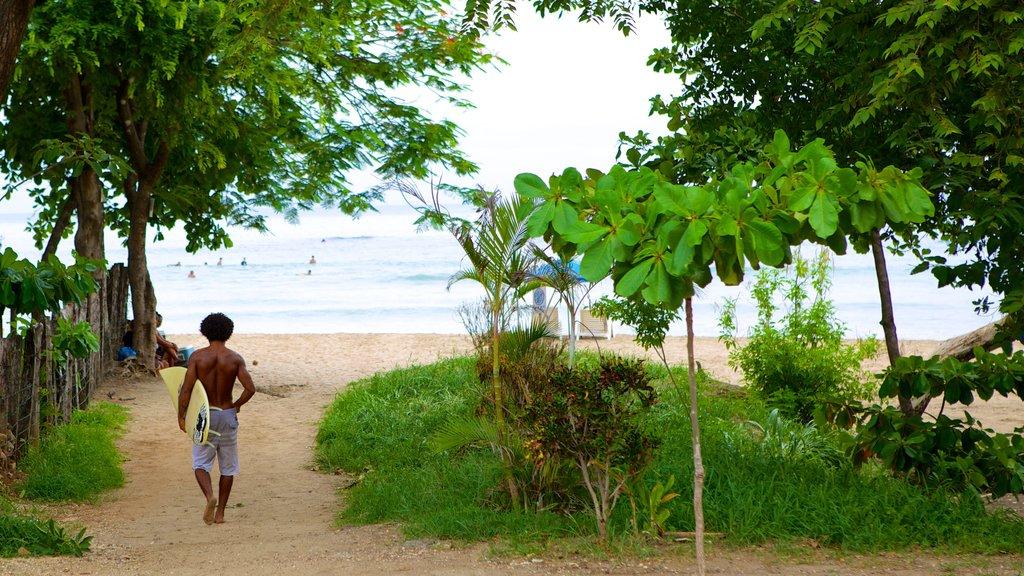 Tamarindo ofreciendo una playa de arena y también un hombre