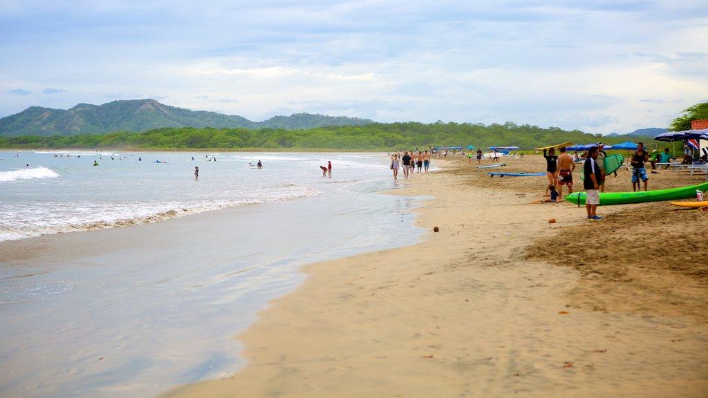 Tamarindo que incluye una playa de arena y también un gran grupo de personas