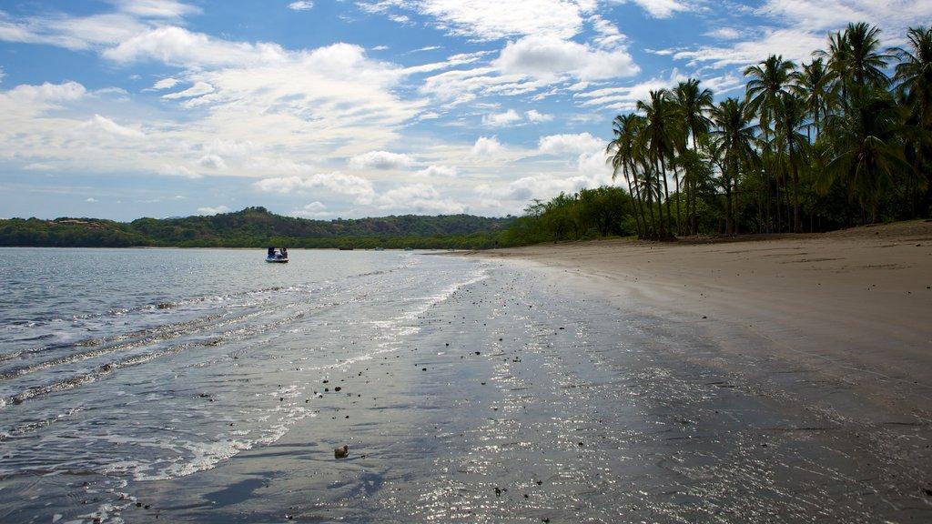 Panama Beach which includes a sandy beach