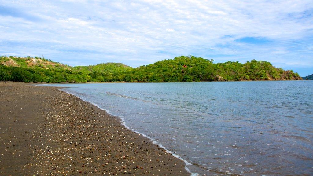 Panama Beach showing a sandy beach