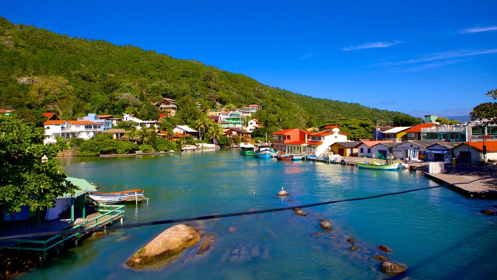 Barra da Lagoa Beach showing a coastal town and a bay or harbor
