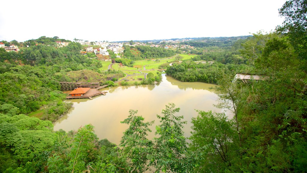 Tangua Park featuring a pond and forests