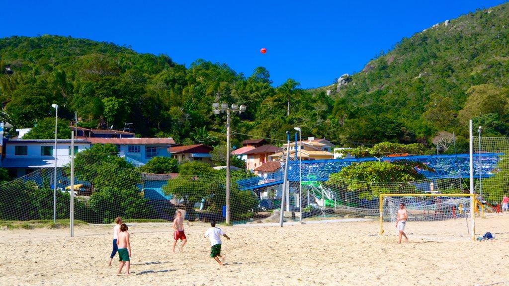 Barra da Lagoa Beach showing a sandy beach as well as a small group of people