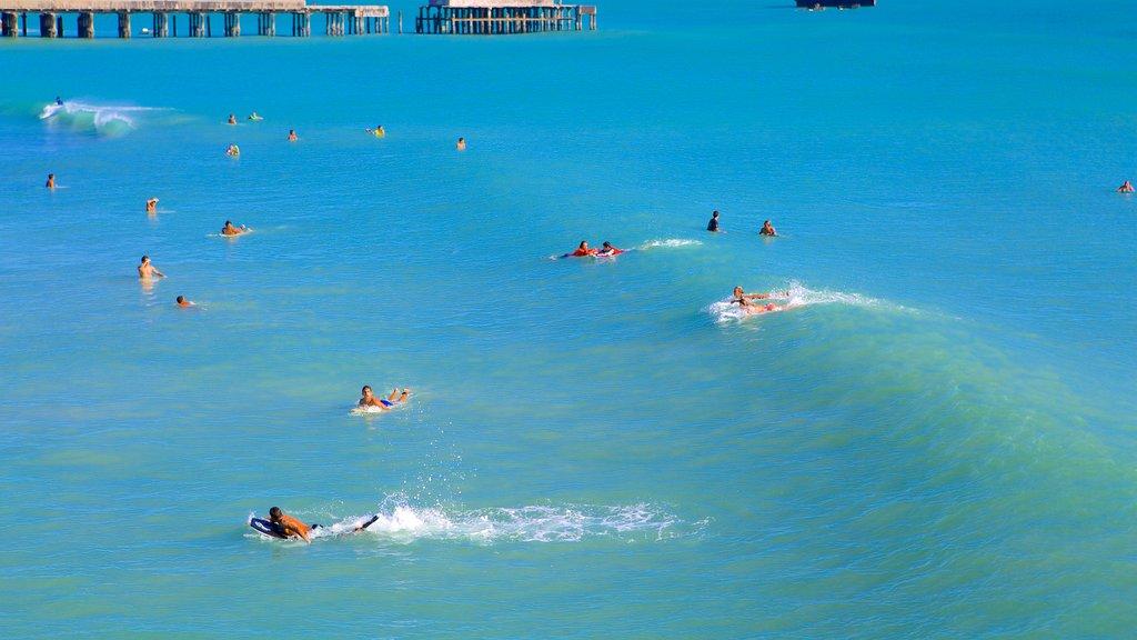 Ponte dos Ingleses mostrando surfe e natação assim como um grande grupo de pessoas