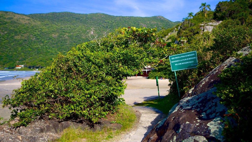 Santa Catarina Island featuring general coastal views and signage