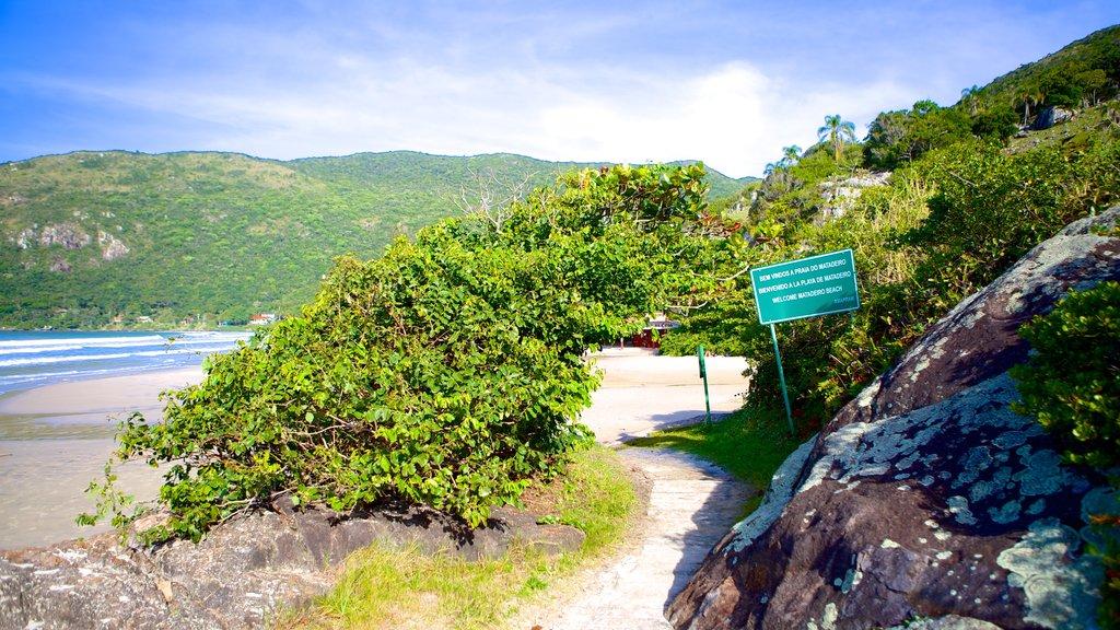 Matadeiro Beach showing general coastal views