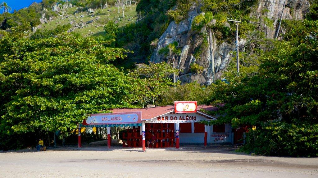 Matadeiro Beach which includes a beach and a beach bar