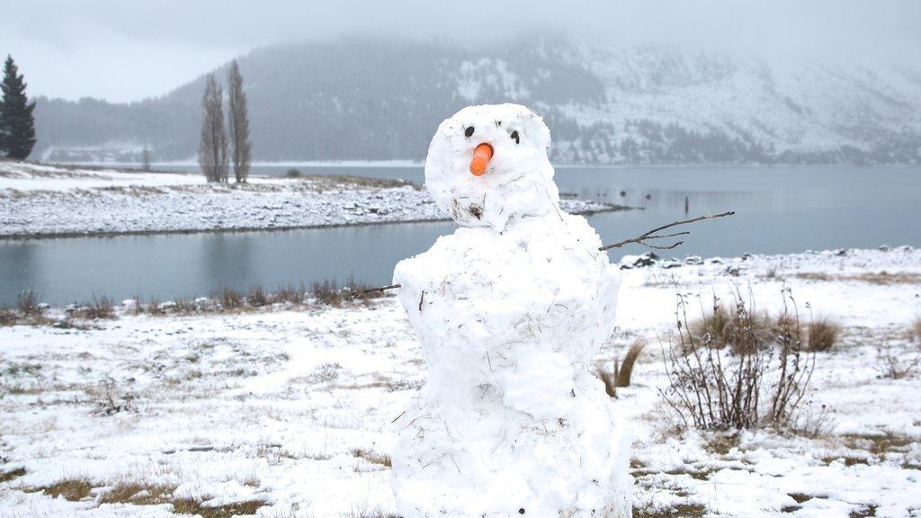 Lake Tekapo ofreciendo un lago o abrevadero, arte al aire libre y nieve