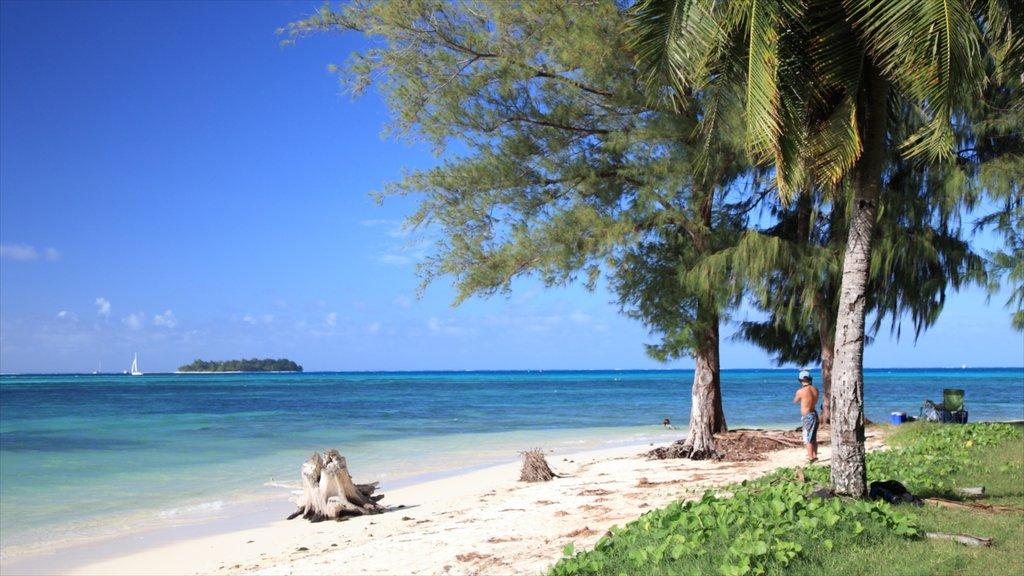 Saipan showing a sandy beach
