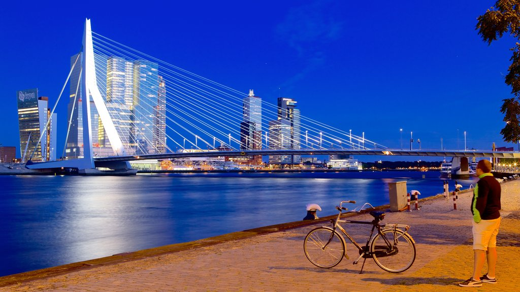 Erasmus Bridge which includes night scenes, cycling and a bridge