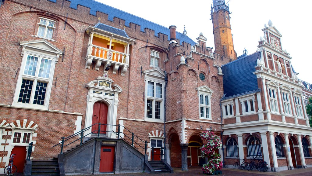 Stadhuis showing street scenes and heritage architecture