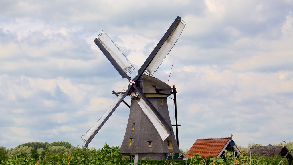 Kinderdijk featuring a windmill