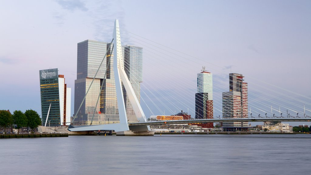 Erasmus Bridge showing a city, modern architecture and city views