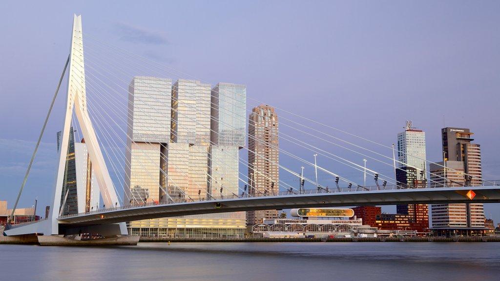 Erasmus Bridge featuring modern architecture, a bridge and a city