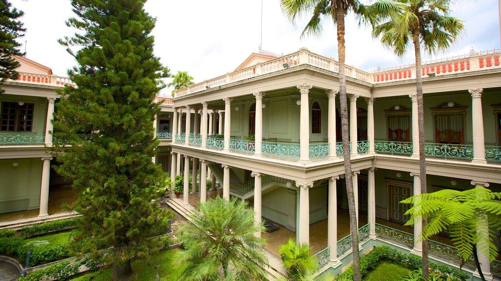 Palacio Nacional showing chateau or palace and tropical scenes