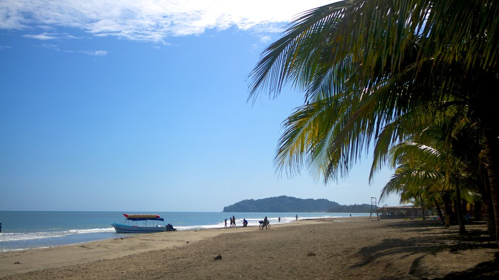 Tela showing a sandy beach and tropical scenes
