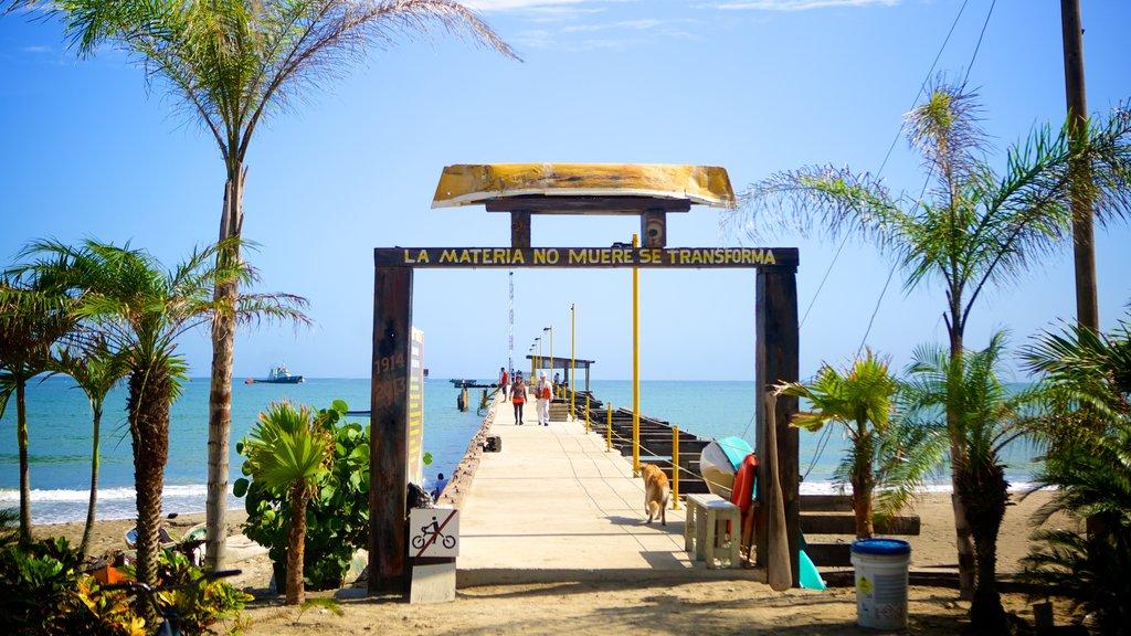 Tela featuring general coastal views and tropical scenes