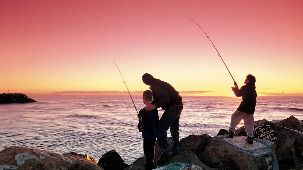 Port Macquarie showing general coastal views, fishing and rocky coastline