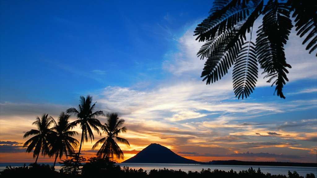 Manado showing a sunset, tropical scenes and general coastal views