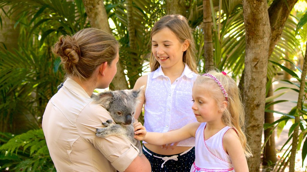 Australia Zoo featuring cuddly or friendly animals and zoo animals as well as children