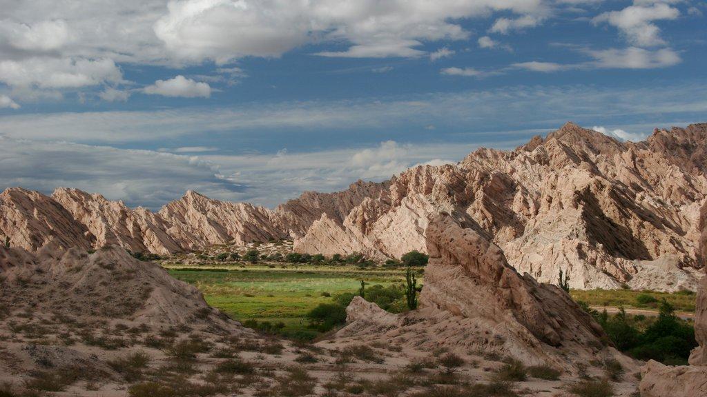Salta showing mountains