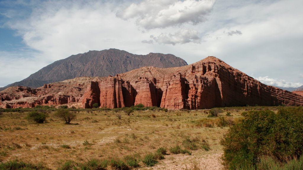 Salta which includes mountains, tranquil scenes and landscape views