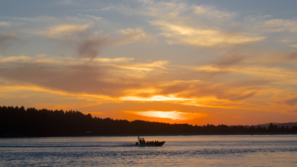 Tofino featuring general coastal views, a sunset and boating