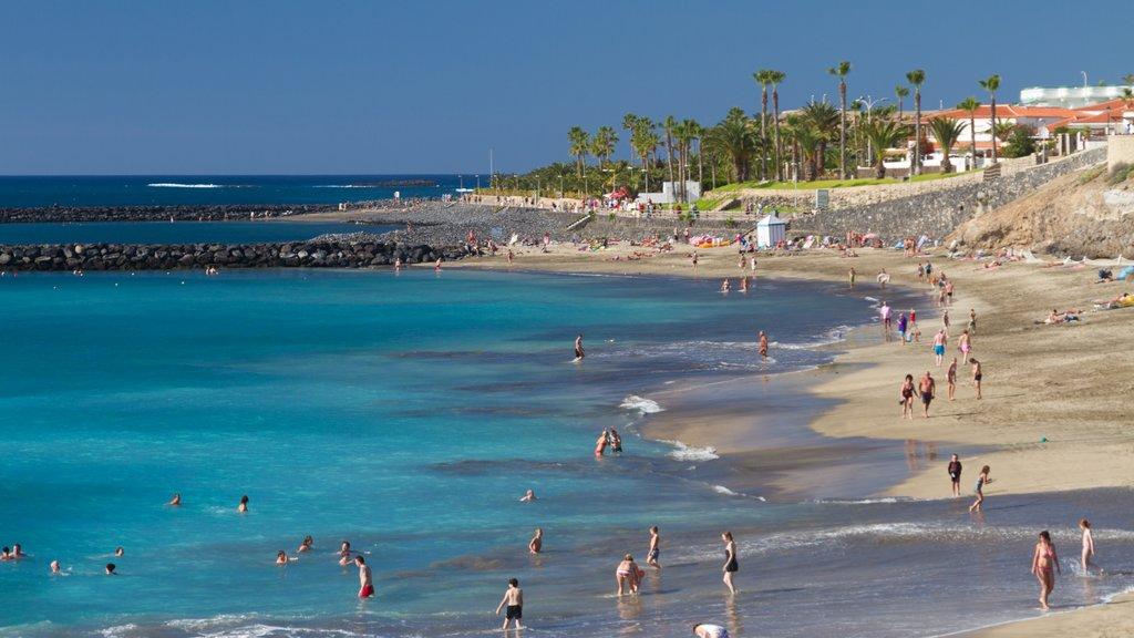 Adeje ofreciendo una playa, natación y vistas de paisajes