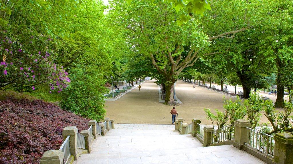 Alameda Park showing a park