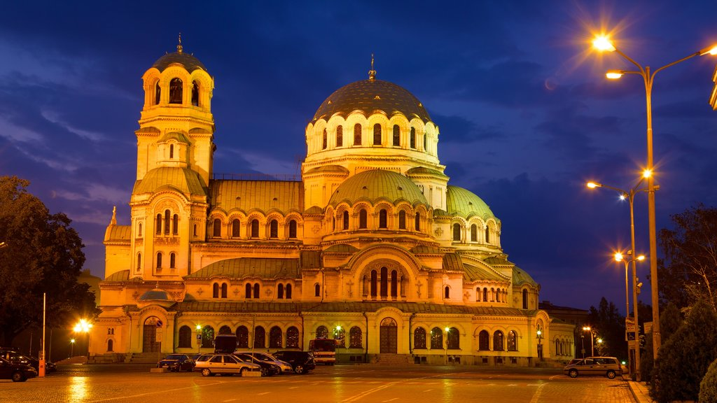 Alexander Nevski Cathedral showing a church or cathedral, night scenes and heritage architecture