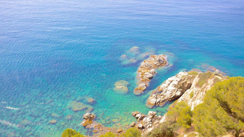 Sant Joan Castle showing rocky coastline