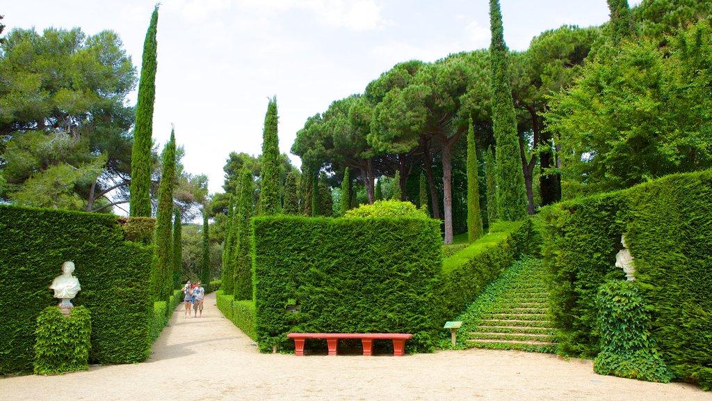 Santa Clotilde Gardens showing a garden