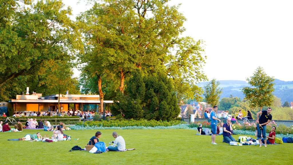 Bern Rose Garden which includes a park and picnicing as well as a large group of people