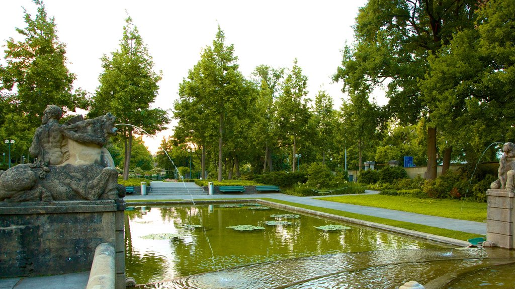 Bern Rose Garden which includes a pond, a park and a fountain