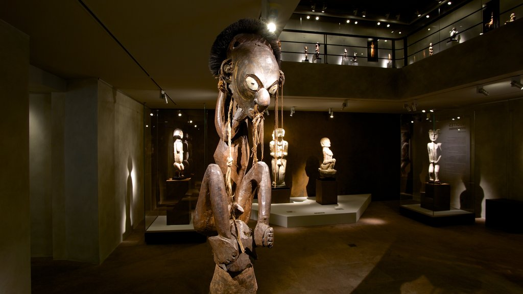 Barbier-Mueller Archeology Museum which includes interior views and indigenous culture