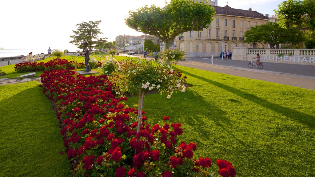 Vevey showing a park and flowers