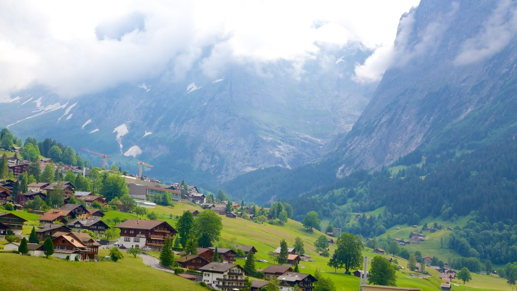 Grindelwald showing farmland, a small town or village and landscape views