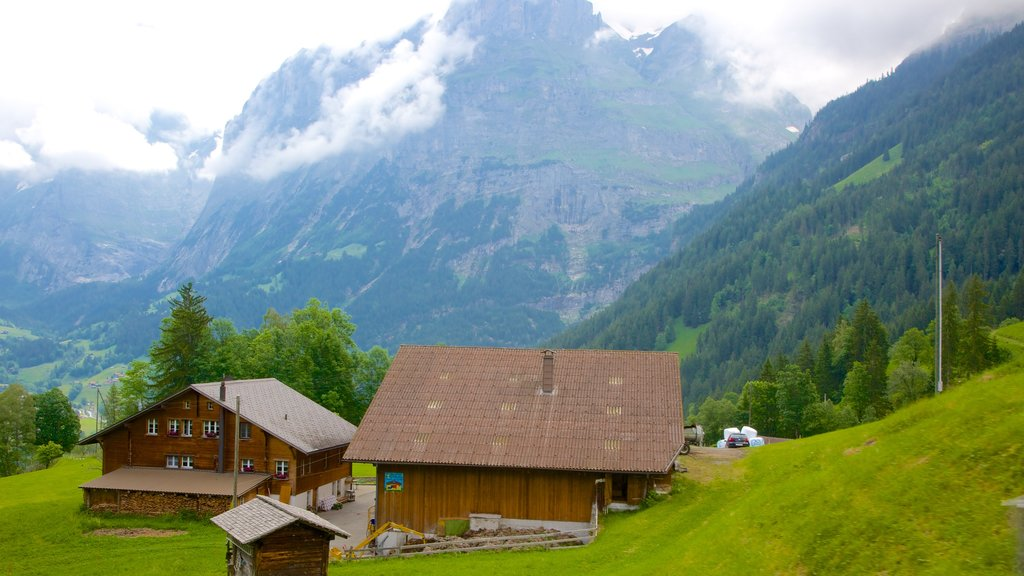 Grindelwald featuring farmland and a house