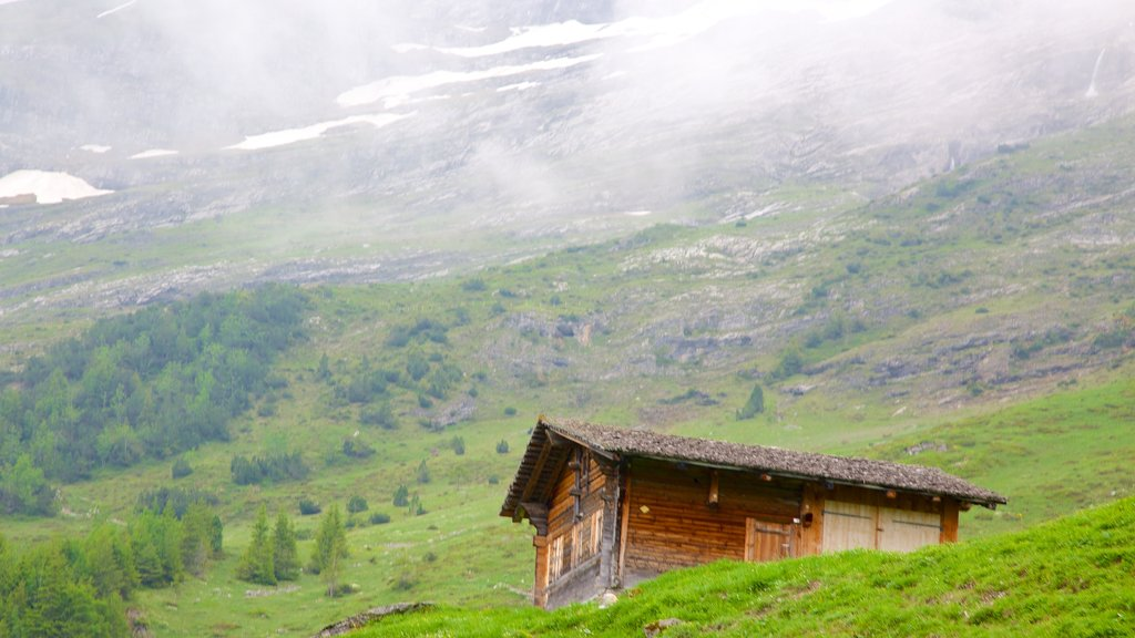 Grindelwald featuring farmland, mist or fog and a house
