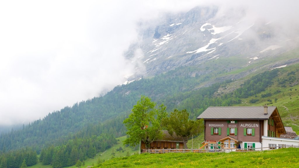 Grindelwald which includes a house, mist or fog and farmland