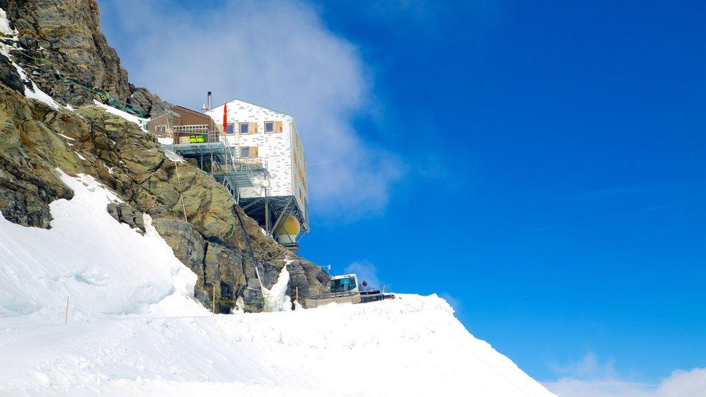 Jungfraujoch ofreciendo montañas y nieve