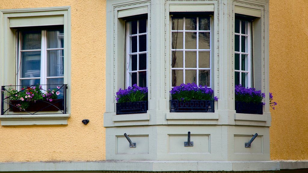 Thun featuring flowers and a house