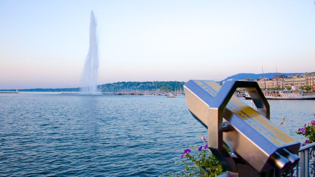 Jet d\'Eau Fountain showing views, a lake or waterhole and a fountain